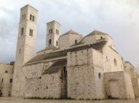 Steaua 8 Rux Ces despre ZONELE VERII - Catedrale sudice